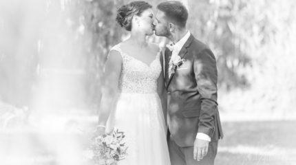 Svatba v Americe